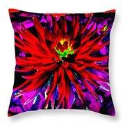 Dahlia Rouge Texture Avec La Frontiere  Throw Pillow