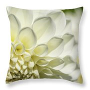Dahlia Study 4 Throw Pillow