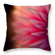 Dahlia Sunset Throw Pillow