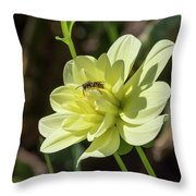 Dahlia With Wasp Throw Pillow