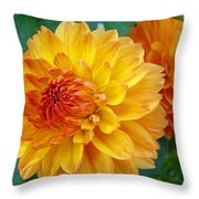 Dahlias Art Prints Orange Dahlia Flowers Baslee Troutman Throw Pillow