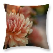Dahlias Season Throw Pillow