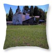 Dahmen Barn II Throw Pillow