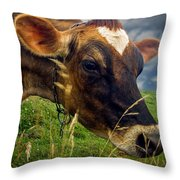 Dairy Cow Eating Grass Throw Pillow