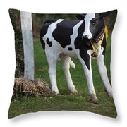 Dairy Cow Stature. Throw Pillow
