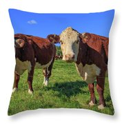 Cattle Andover New Hampshire Throw Pillow