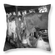 Dairy Farm, C1920 Throw Pillow