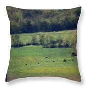 Dairy Farm In The Finger Lakes Throw Pillow