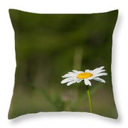 Daisey  Throw Pillow