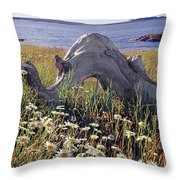136236-daisies And Driftwood  Throw Pillow