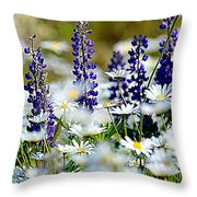 Daisies And Lupine Throw Pillow