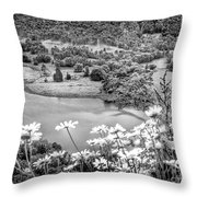 Daisies At Queens View In Greyscale Throw Pillow