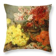 Daisies, Begonia, And Other Flowers In Pots Throw Pillow