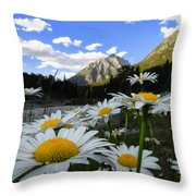 Daisies By Mcdonald Creek With Mt Cannon, Glacier Park Throw Pillow