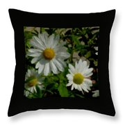 Daisies By The Number Throw Pillow