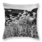 Daisies By The Roadside At Loch Linnhe B W Throw Pillow