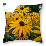 Daisies From Niagara Throw Pillow