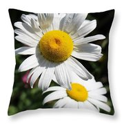 Daisies In The Sunshine Throw Pillow