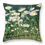 Daisies Quote Throw Pillow