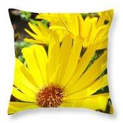 Daisies Summer Garden Art Print Yellow Daisy Baslee Throw Pillow