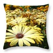 Daisies Yellow Daisy Flowers Garden Art Prints Baslee Troutman Throw Pillow