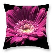 Daisy 01 Throw Pillow