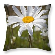 Daisy 1 Throw Pillow