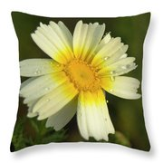 Daisy #5 Throw Pillow