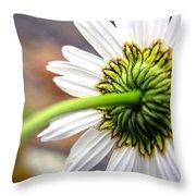 Daisy Back Throw Pillow