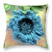Daisy Blue Frame Throw Pillow