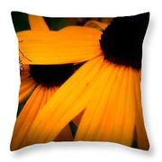 Daisy Bug Throw Pillow