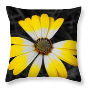 Daisy Crown Throw Pillow
