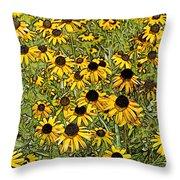 Daisy Daisy Throw Pillow