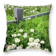 Daisy Fence Throw Pillow