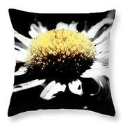 Daisy Gray Throw Pillow