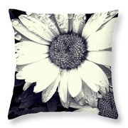 Daisy In Black And White  Throw Pillow