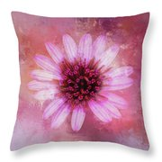 Daisy In Magenta Throw Pillow