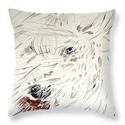 Daisy In The Snow Throw Pillow