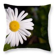 Daisy In The Sun Throw Pillow