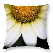 Daisy Smile Throw Pillow