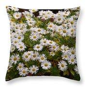 Daisy Wave Throw Pillow