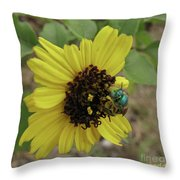 Daisy With Blue Bee Throw Pillow