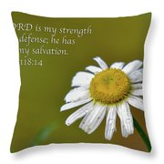 My Strength Throw Pillow