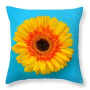 Daisy - Yellow - Orange On Light Blue Throw Pillow