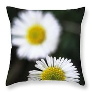 Daisys Throw Pillow