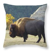 Dakota Badlands Majesty Throw Pillow