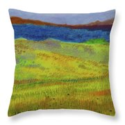 Dakota Dream Land Throw Pillow