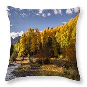 Dallas Creek Throw Pillow