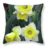 Dallas Daffodils 08 Throw Pillow