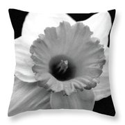 Dallas Daffodils 17 Throw Pillow